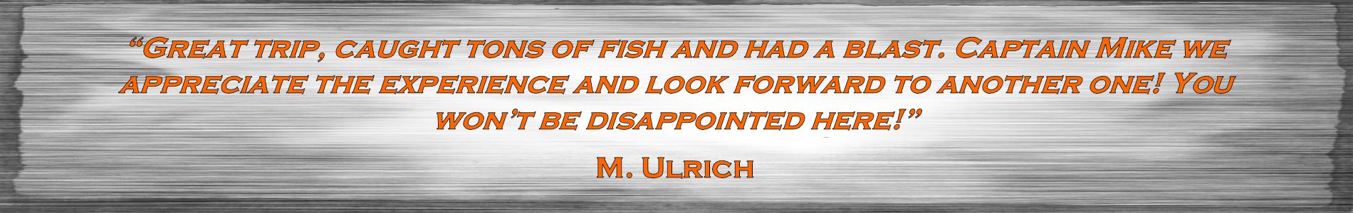 Ulrich_Testimonial