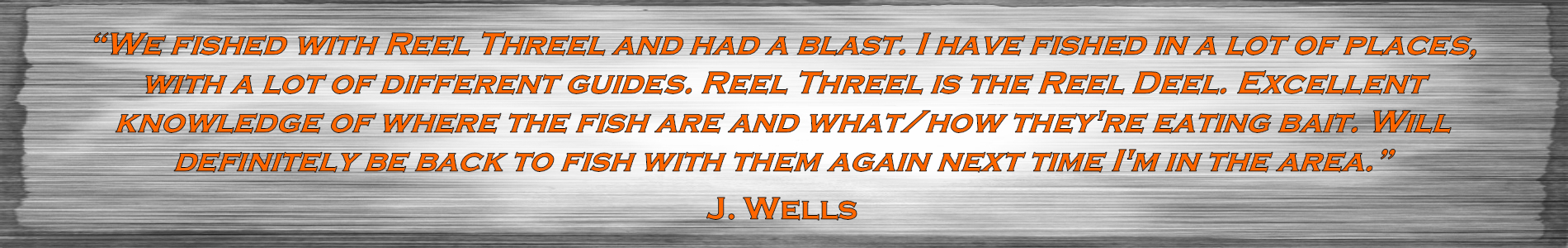 Wells_Testimonial